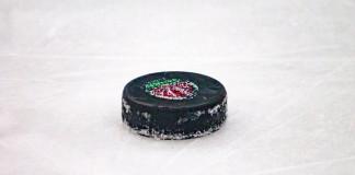 Беларусь, Латвия, Польша и Украина планируют в следующем году провести ряд клубных турниров