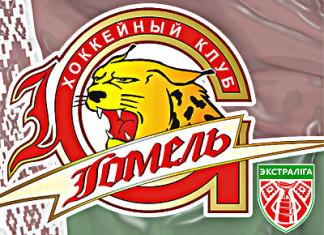 «БХ»: «Гомель» не пустили на тренировку из-за долгов перед Ледовым Дворцом