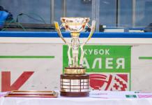 Иностранный клуб хочет принять участие в Кубке Салея-2019