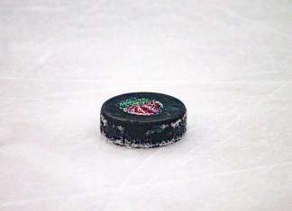 «БХ»: В Пинске состоялся первый хоккейный матч нового сезона