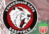 22 игрока заявлены «Бобруйском» на Кубок Салея